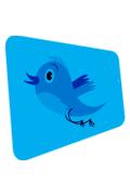 Naast andere koppelingen met sociale media bevat het Footsteps CMS nu ook een Twitter integratie. Uw nieuwste berichten, producten of andere vermeldingen worden automatisch doorgestuurd naar uw Twitter-volgelingen, zonder dat u daar nog een extra handeling voor hoeft te verrichten.