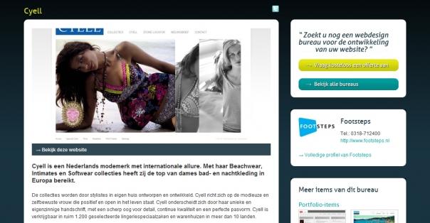 Webdesignbureaus-3.jpg